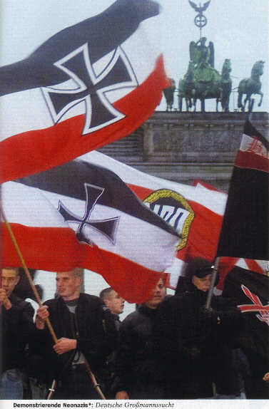 National Socialist And Neo Nazi Flags 1 Germany